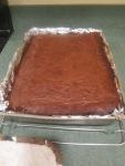 Palm Beach Brownies012