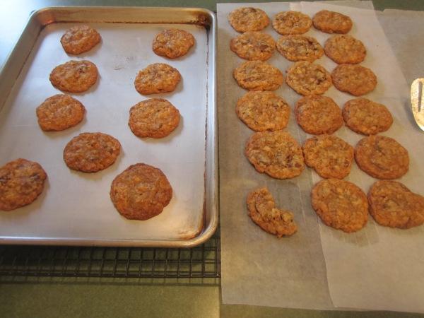 Becca Cookies 014