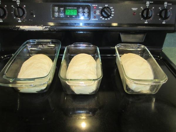 Bread 021