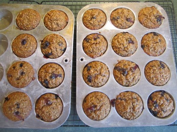 Oatmeal Muffins 010