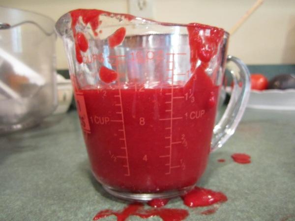 raspberry icecream 002
