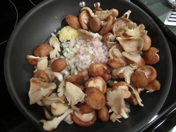 Mushroom sauce 003
