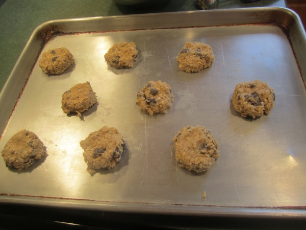 Raisinette Cookies 007